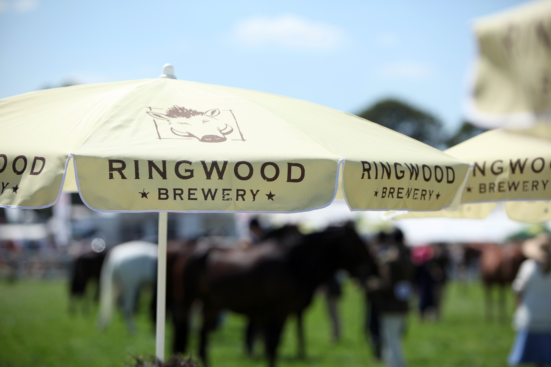 Sponsorship of the New Forest and Hampshire County Show