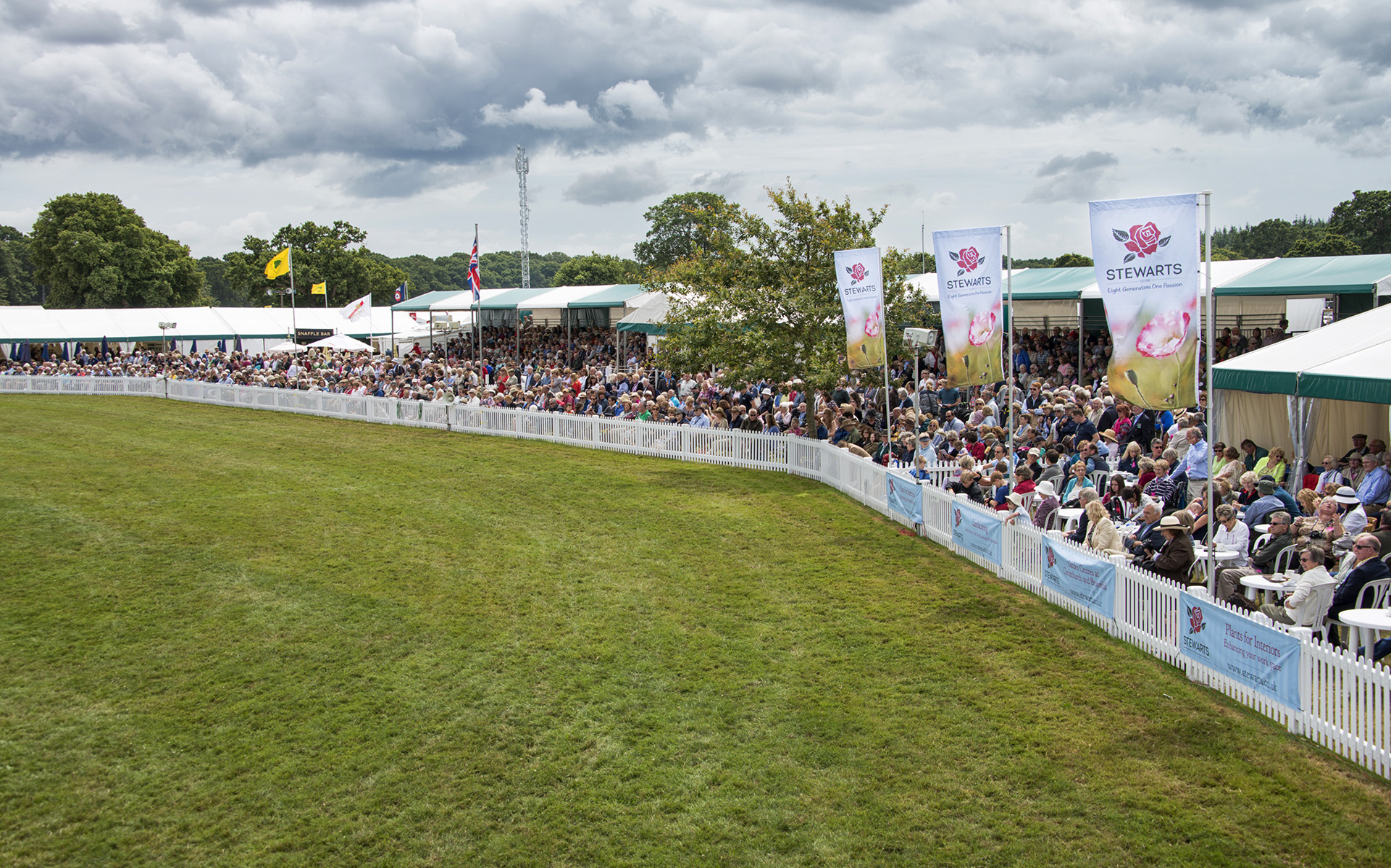 Watch the action in the main rings from the members grandstand seating