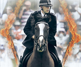 Metropolitan Mounted Police Confirmed as 2016 Main Ring Attraction