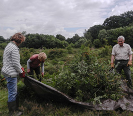 New Forest Area Conservation Volunteers
