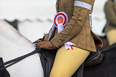 2018 New Forest Show HOYS Qualifier Classes announced.