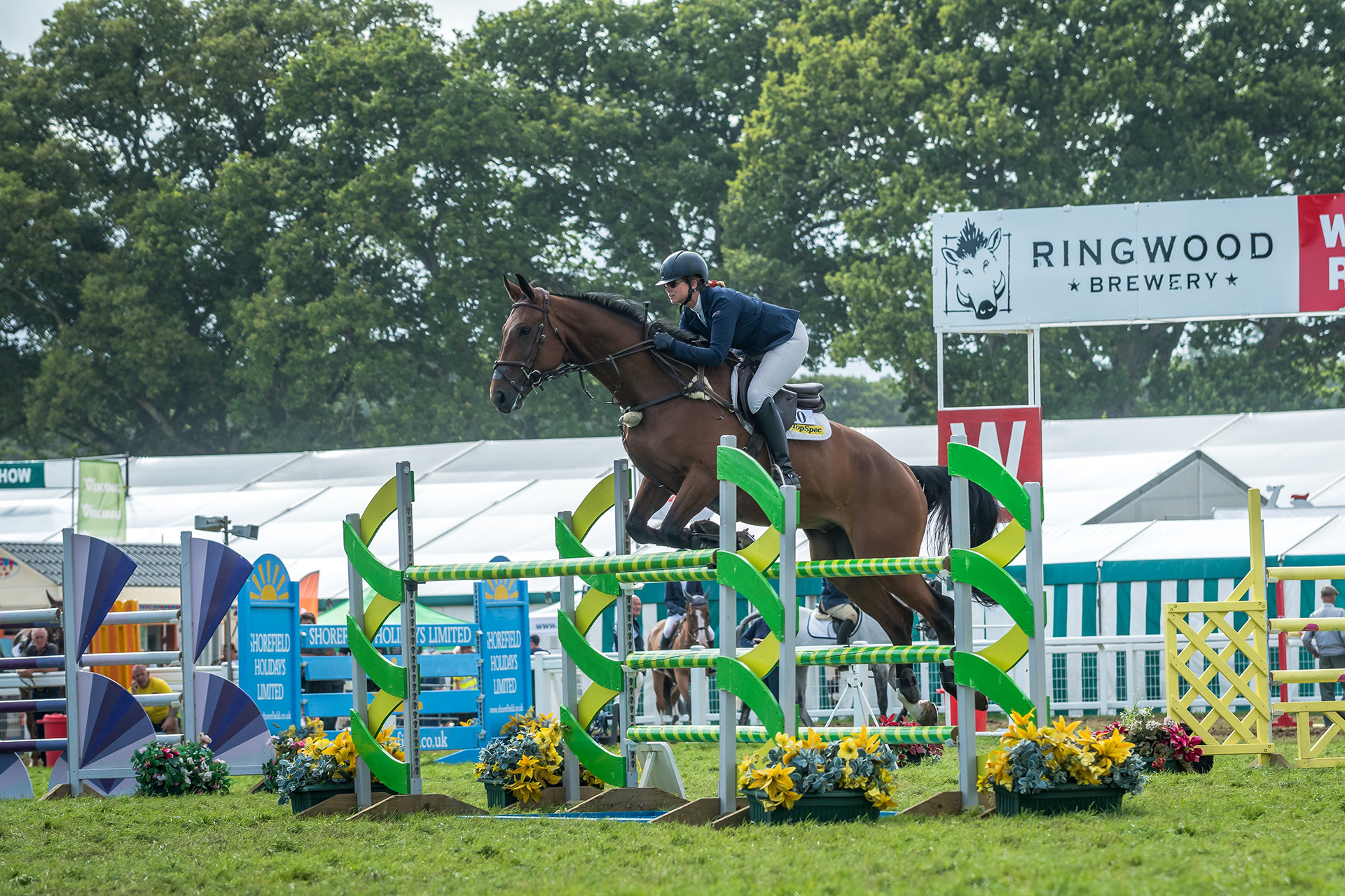Horse Competitions | New Forest Show