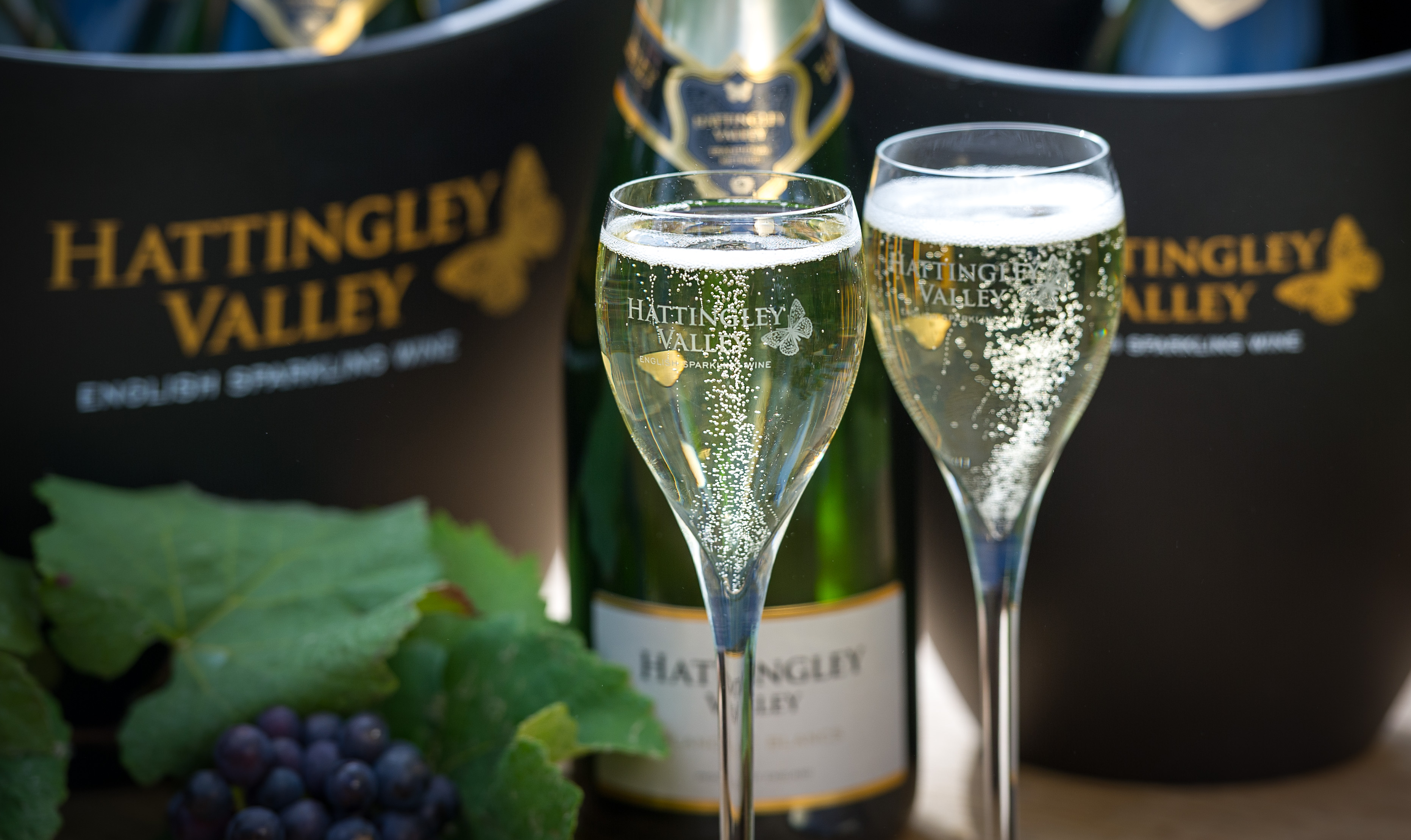 Hattingley Valley return to Members Area with English Sparkling Wine Bar